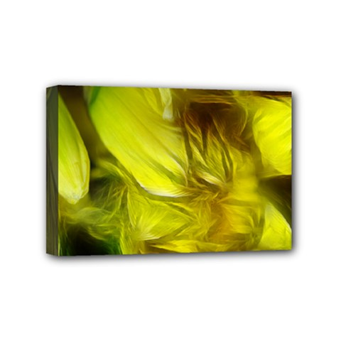 Abstract Yellow Daffodils Mini Canvas 6  X 4  (framed)
