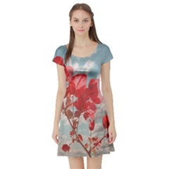 Flowers in the Sky Short Sleeved Skater Dress