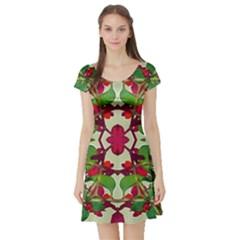 Floral Print Colorful Pattern Short Sleeved Skater Dress