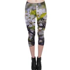 Apple Blossoms Capri Leggings
