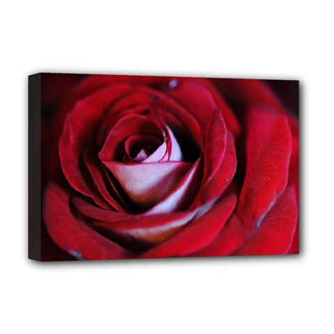 Red Rose Center Deluxe Canvas 18  X 12  (framed)