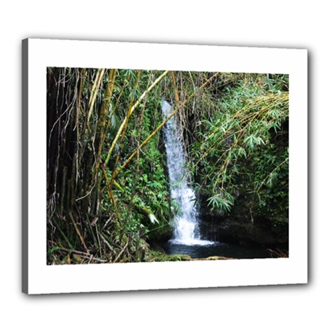 Bamboo Waterfall Canvas 24  X 20  (framed)