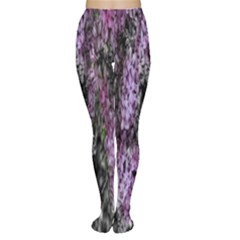 Lilacs Fade to Black and White Tights