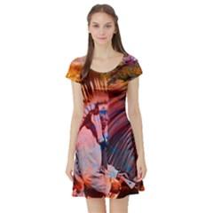 Astral Dreamtime Short Sleeved Skater Dress