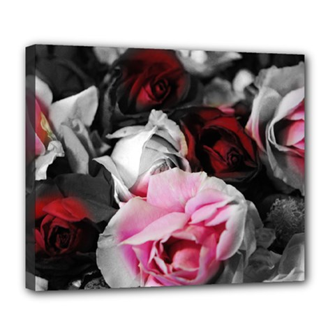 Black and White Roses Deluxe Canvas 24  x 20  (Framed)