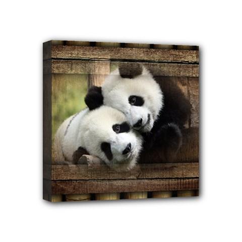 Panda Love Mini Canvas 4  X 4  (framed)
