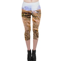 Blowing prairie Grass Capri Leggings