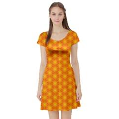Cute Pretty Elegant Pattern Short Sleeve Skater Dress