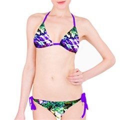 Officially Sexy Purple Floating Hearts Collection Bikini
