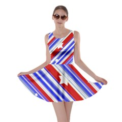 Usa Pattern Print Skater Dress