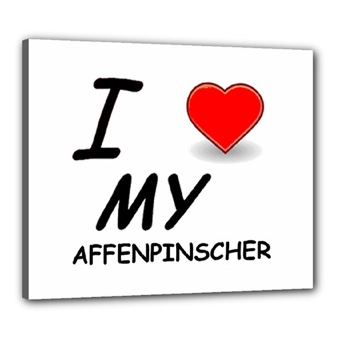 Affen Love Canvas 24  x 20  (Framed)