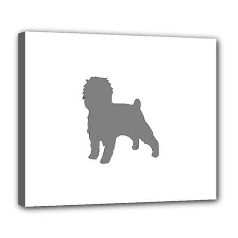 Affenpinscher Color Grey Silo Deluxe Canvas 24  x 20  (Framed)