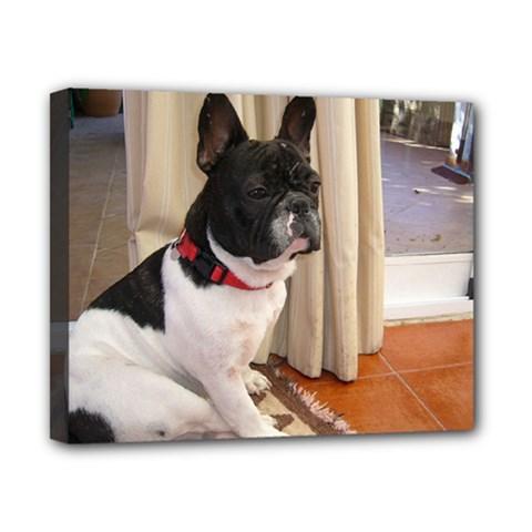 Sitting 3 French Bulldog Canvas 10  x 8  (Framed)