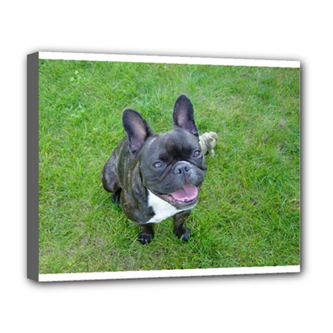 Sitting 2 French Bulldog Deluxe Canvas 20  x 16  (Framed)