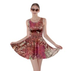 Floral Print Collage  Skater Dress