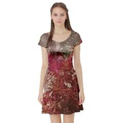 Floral Print Collage  Short Sleeve Skater Dress