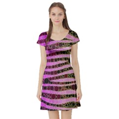 Hot Pink Black Tiger Pattern  Short Sleeve Skater Dress