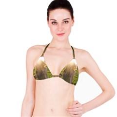 Sophia Bikini Top