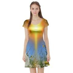 Dandelions Short Sleeve Skater Dress