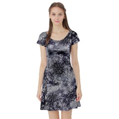 Nature Collage Print  Short Sleeve Skater Dress