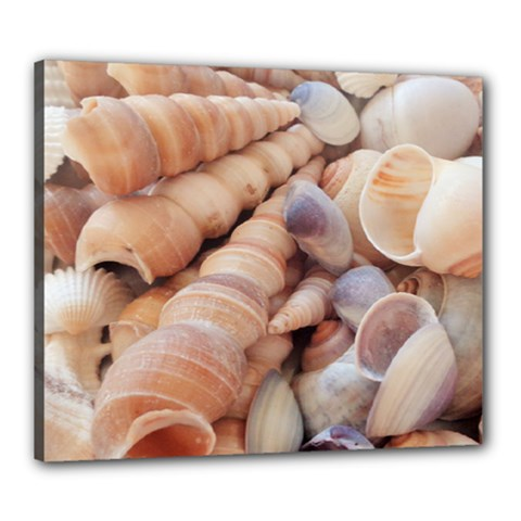 Sea Shells Canvas 24  x 20  (Framed)