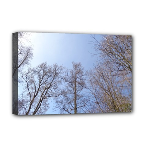 Large Trees In Sky Deluxe Canvas 18  X 12  (framed)
