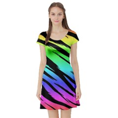 Rainbow Tiger Short Sleeve Skater Dress