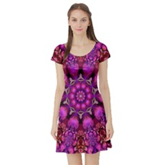 Pink Fractal Kaleidoscope  Short Sleeve Skater Dress