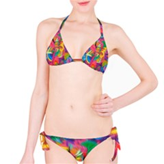 Colorful Floral Abstract Painting Bikini