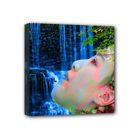 Fountain Of Youth Mini Canvas 4  X 4  (framed)