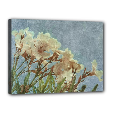 Floral Grunge Vintage Photo Canvas 16  X 12  (framed)