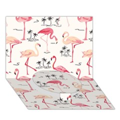 Flamingo Pattern Circle Bottom 3d Greeting Card (7x5)