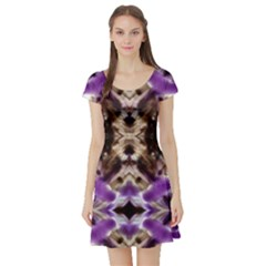 two thrones by saprillika Short Sleeve Skater Dress