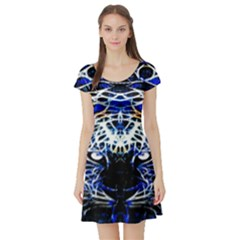 Officially Sexy  Panther Collection Blue Short Sleeve Skater Dress