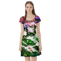 Officially Sexy Floating Hearts Collection Green Short Sleeve Skater Dress