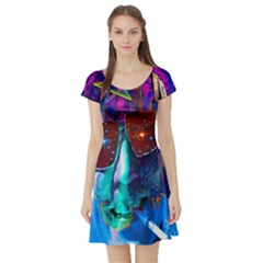Voyage Of Discovery Short Sleeve Skater Dresses