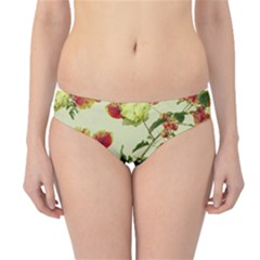 Vintage Style Floral Print Hipster Bikini Bottoms