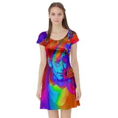 Brainstorm Short Sleeve Skater Dresses