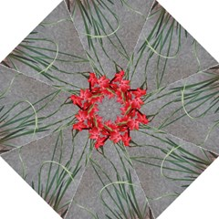 Red Flowers Hook Handle Umbrellas (medium)