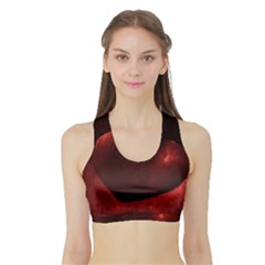 Red Heart Women s Sports Bra with Border