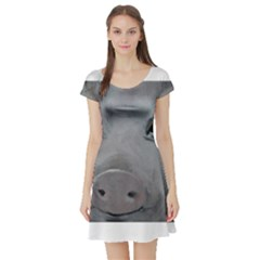 Piggy No. 1 Short Sleeve Skater Dresses