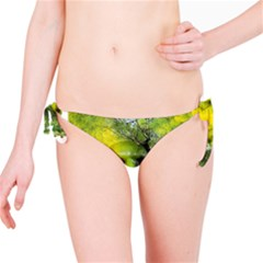 Green Mask Bikini Bottoms