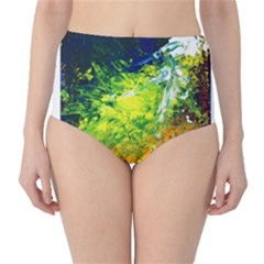 Abstract Landscape High-Waist Bikini Bottoms