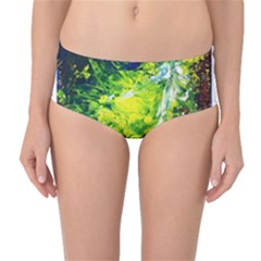 Abstract Landscape Mid-Waist Bikini Bottoms