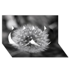 Modern Daffodil Seed Bloom Twin Hearts 3D Greeting Card (8x4)