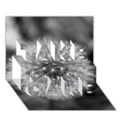 Modern Daffodil Seed Bloom TAKE CARE 3D Greeting Card (7x5)