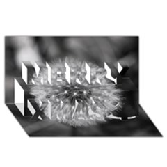 Modern Daffodil Seed Bloom Merry Xmas 3d Greeting Card (8x4)