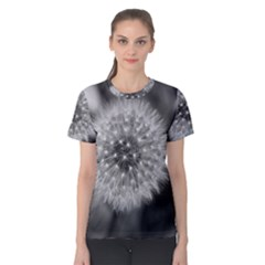 Modern Daffodil Seed Bloom Women s Cotton Tees