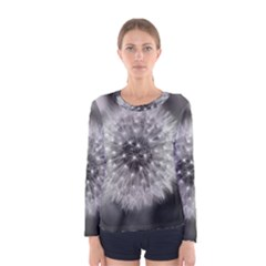 Modern Daffodil Seed Bloom Women s Long Sleeve T Shirts