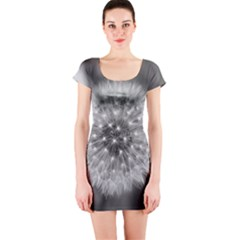Modern Daffodil Seed Bloom Short Sleeve Bodycon Dresses